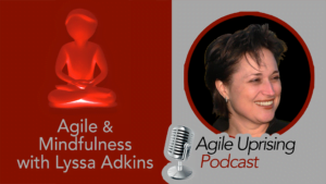 Agile and Mindfulness with Lyssa Adkins